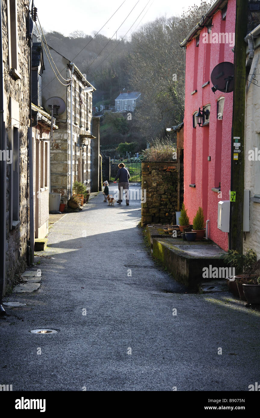 Houses along Church Lane St Dogmaels Pembrokeshire - Stock Image