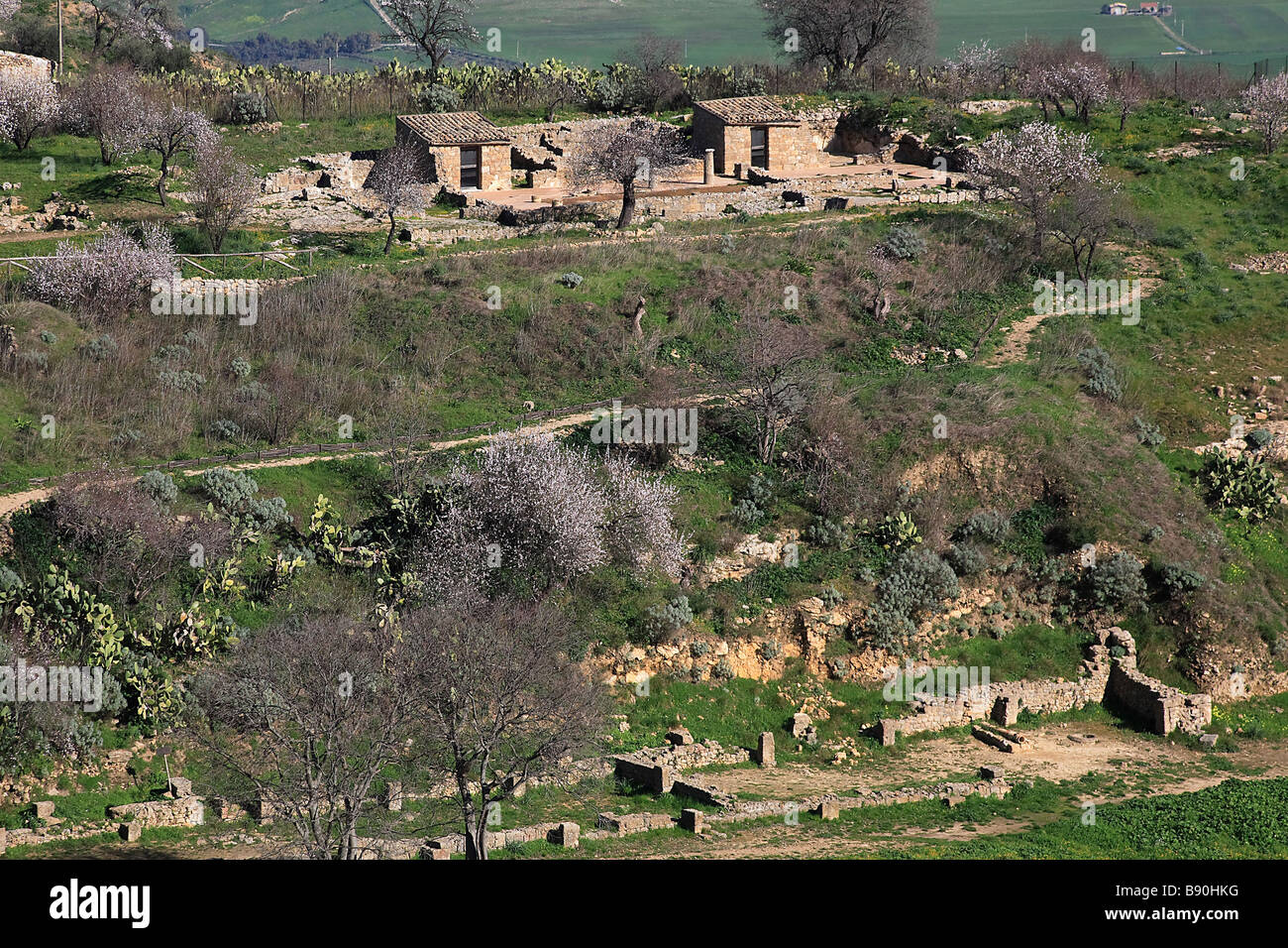 House of Ganymede, archaeological area, Morgantina, Sicily, Italy - Stock Image