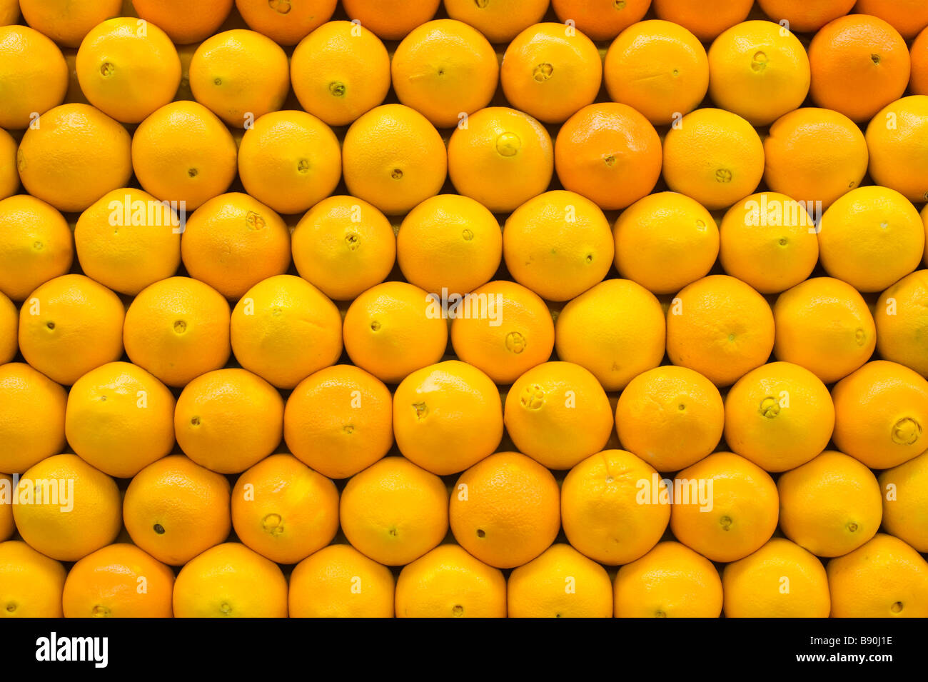 Bright Oranges lined up symmetrically Stock Photo