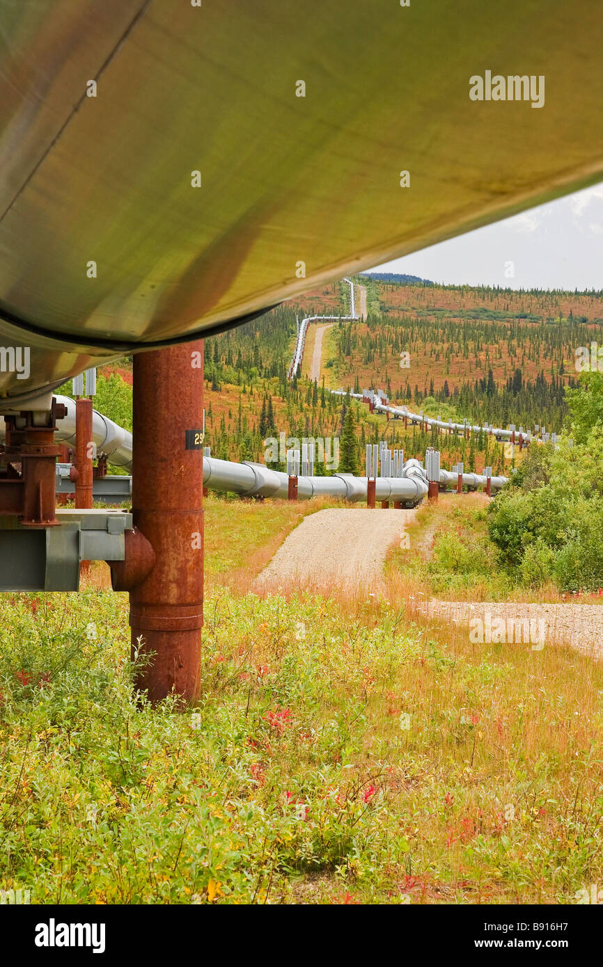 Photo taken from the under side of the Alaskan Pipeline following it out through the fall colored tundra. - Stock Image