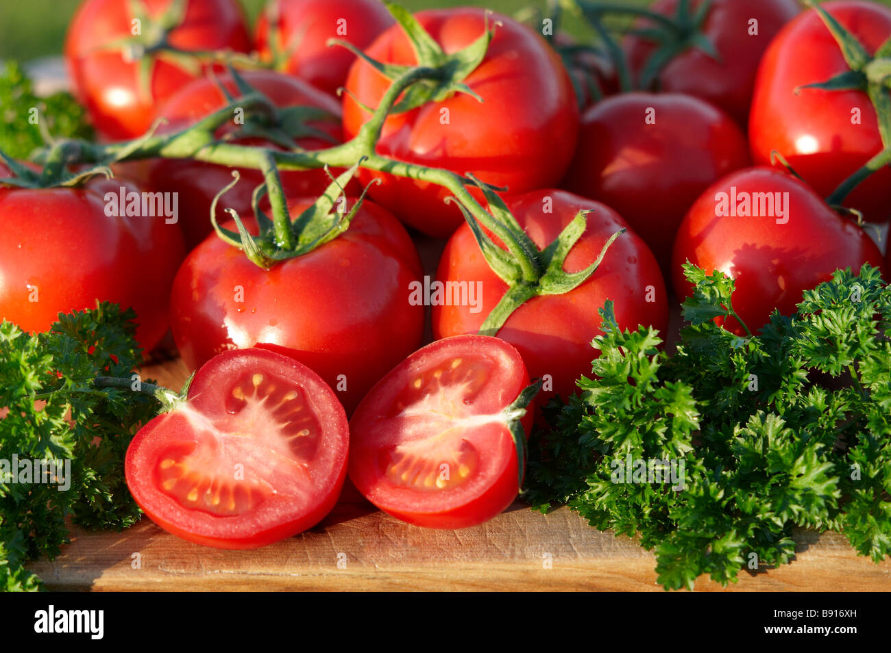 Home grown ripe organic tomatoes - Stock Image