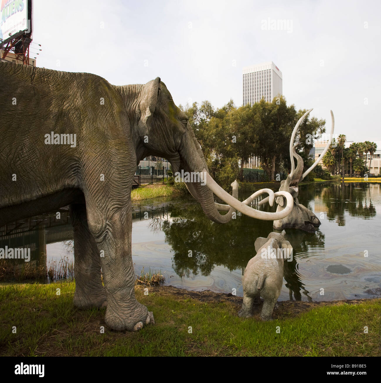 Los Angeles Natural History Museum La Brea Tar Pits