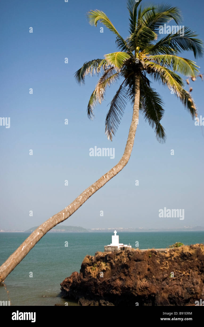 Bended palm over sea with white shrine on background. Stock Photo