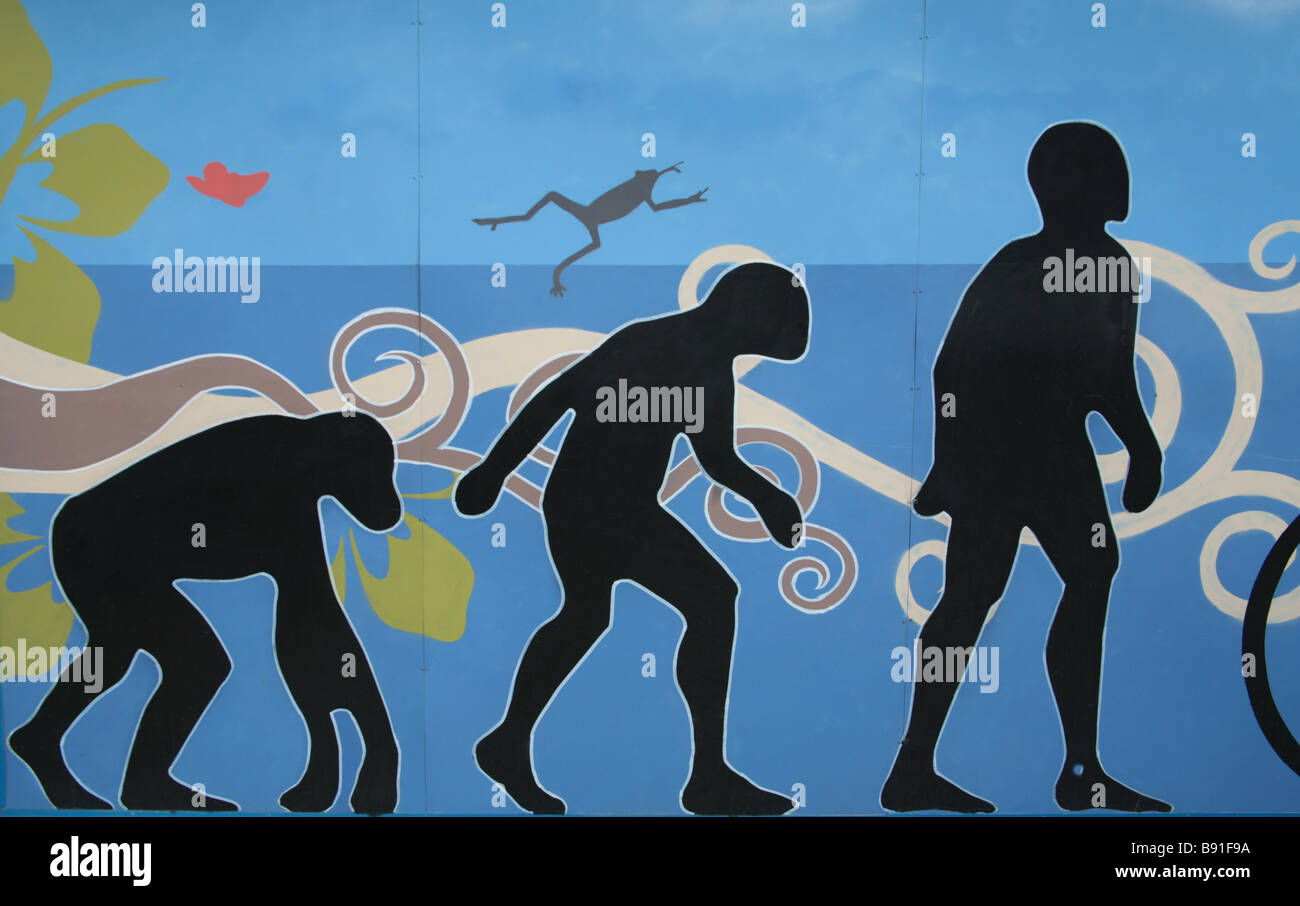 Graffiti on a wall depicting the evolution of man.  For Editorial Use Only. - Stock Image