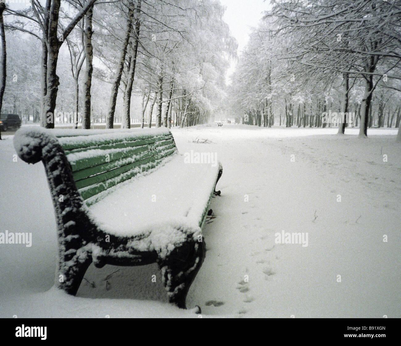 Snow bound bench - Stock Image