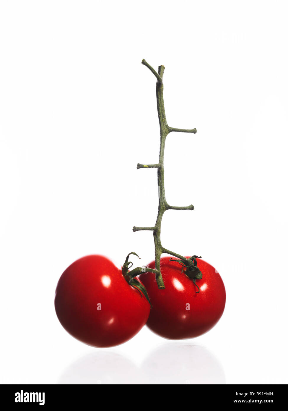 Two tomatoes. - Stock Image