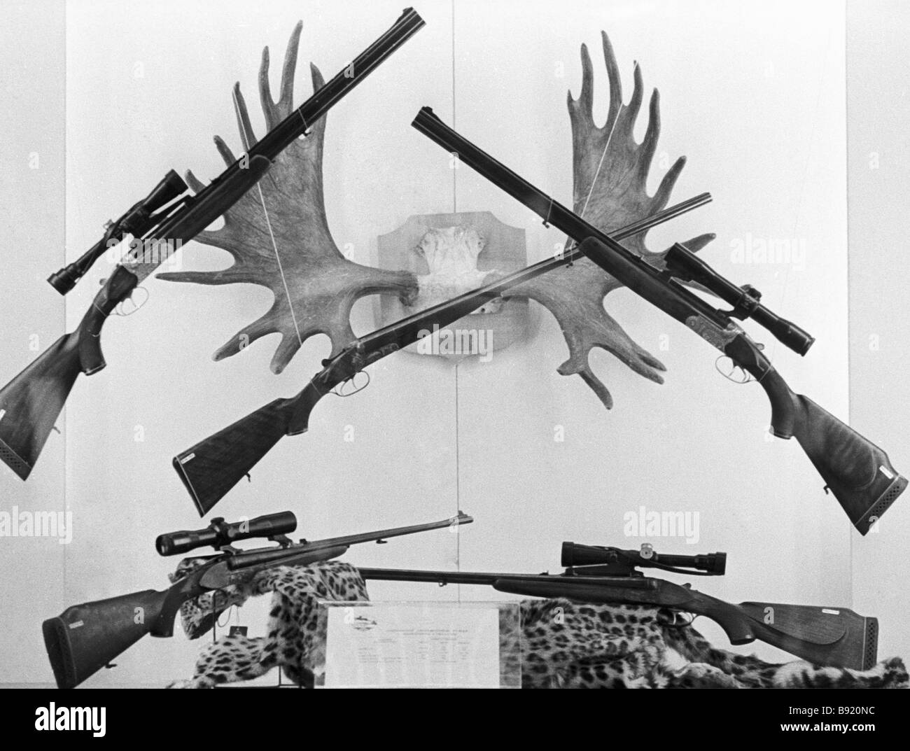 Display at the Hunting Weapons international exhibition - Stock Image