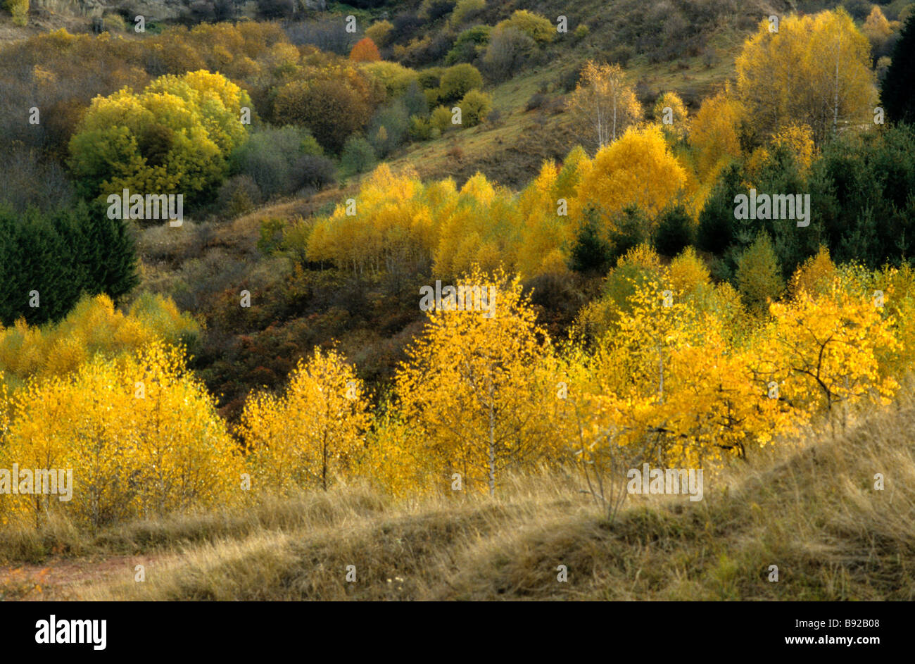 Autumn in the North Caucasian foothills - Stock Image