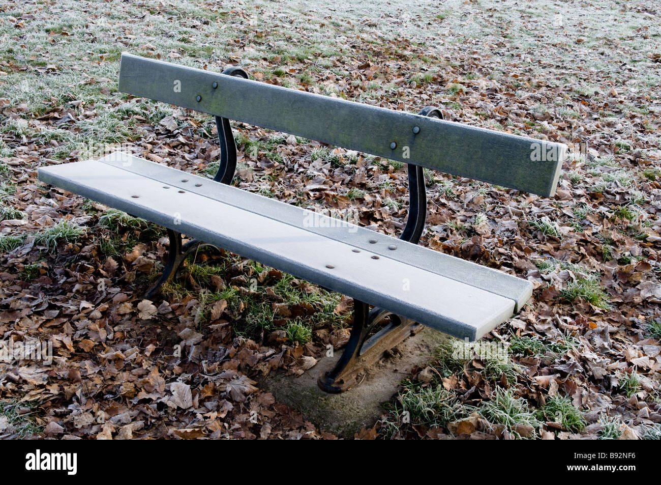 A frosty bench in Roundhay Park, Leeds, England in the winter Stock Photo