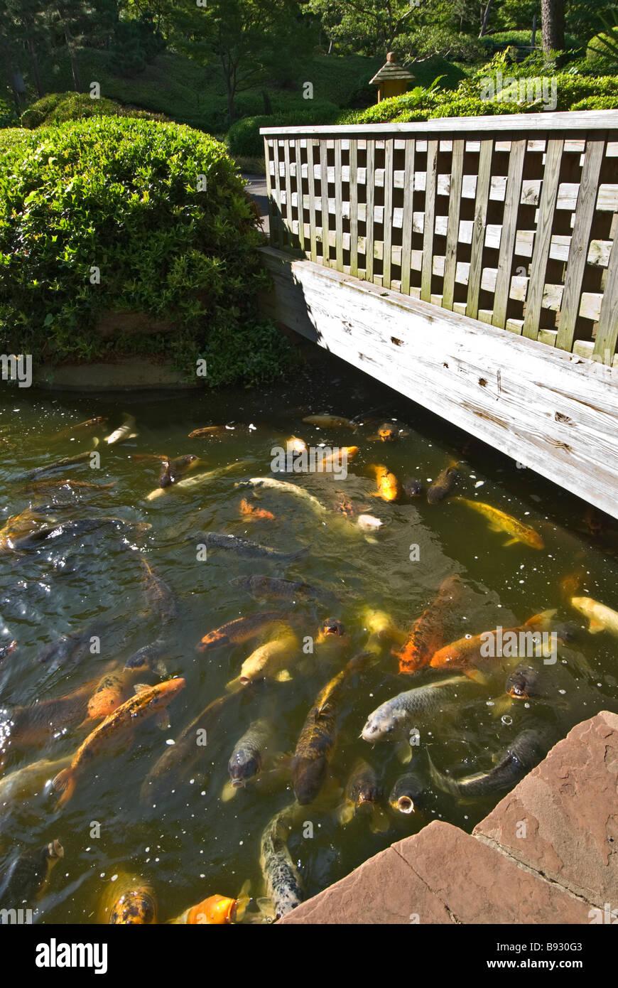 U S Botanic Garden Stock Photos & U S Botanic Garden Stock Images ...