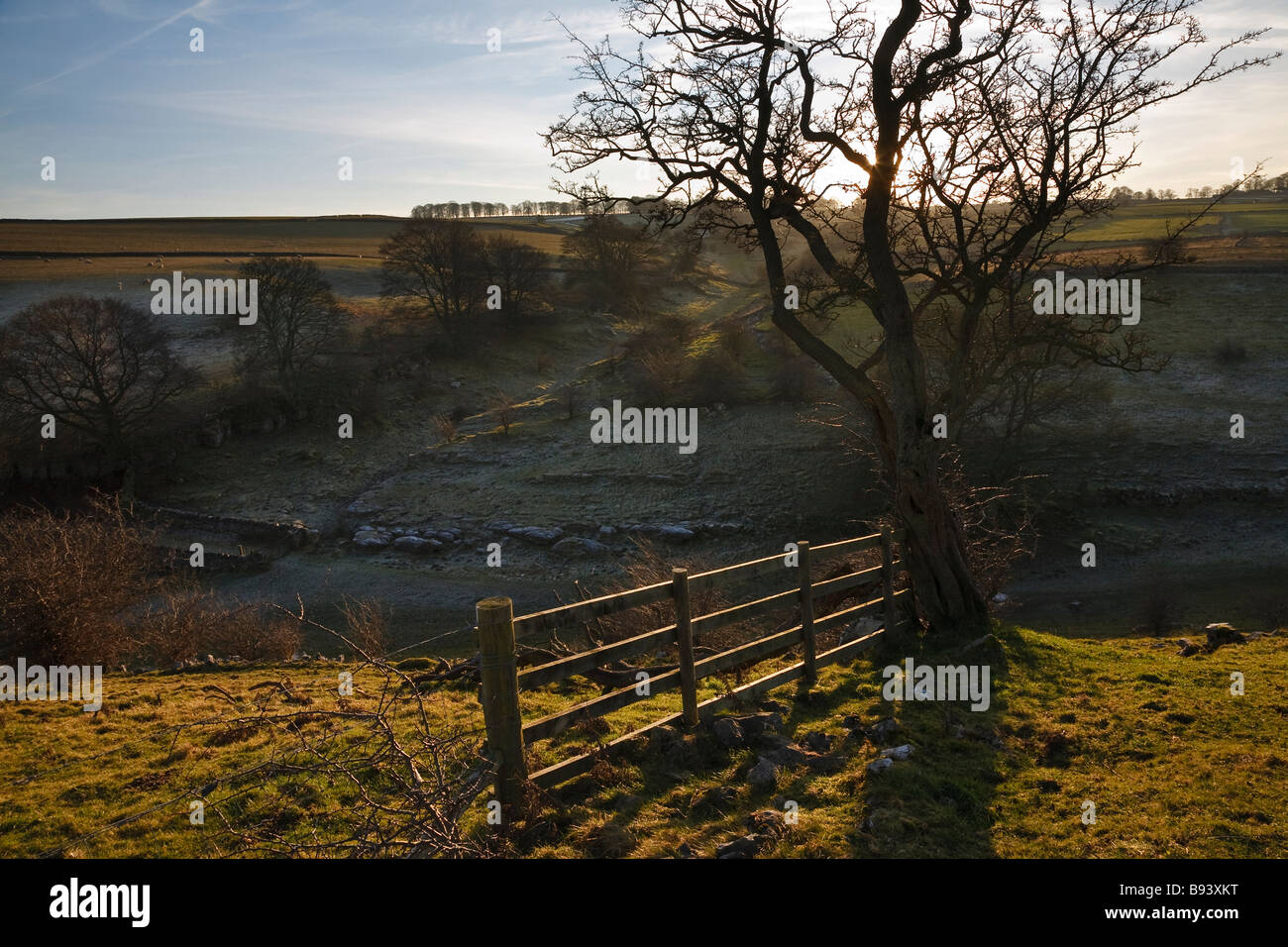 View across Lathkill Dale to Fern Dale Peak District National Park Derbyshire England UK - Stock Image
