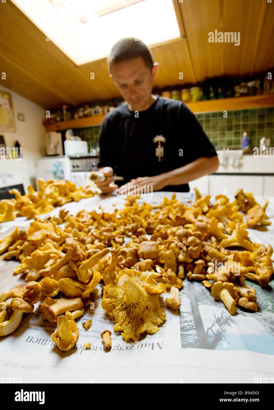 Young man with his chanterelles - Stock Image