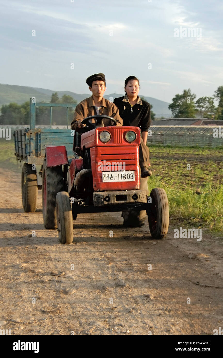 North Korean collective farm members at work - Stock Image