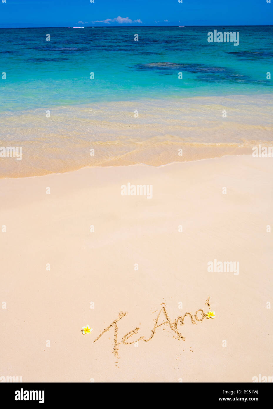 The words 'Te amo' are written on a sandy beach in Hawaii with plumeria blossoms alongside - Stock Image