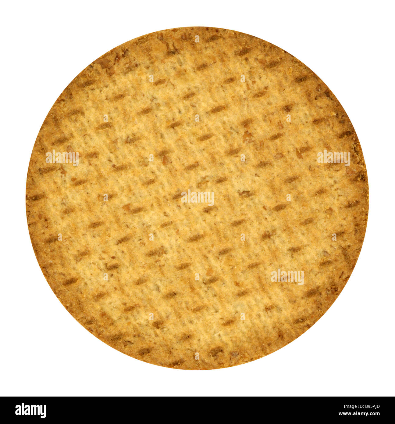 Cookie - Stock Image