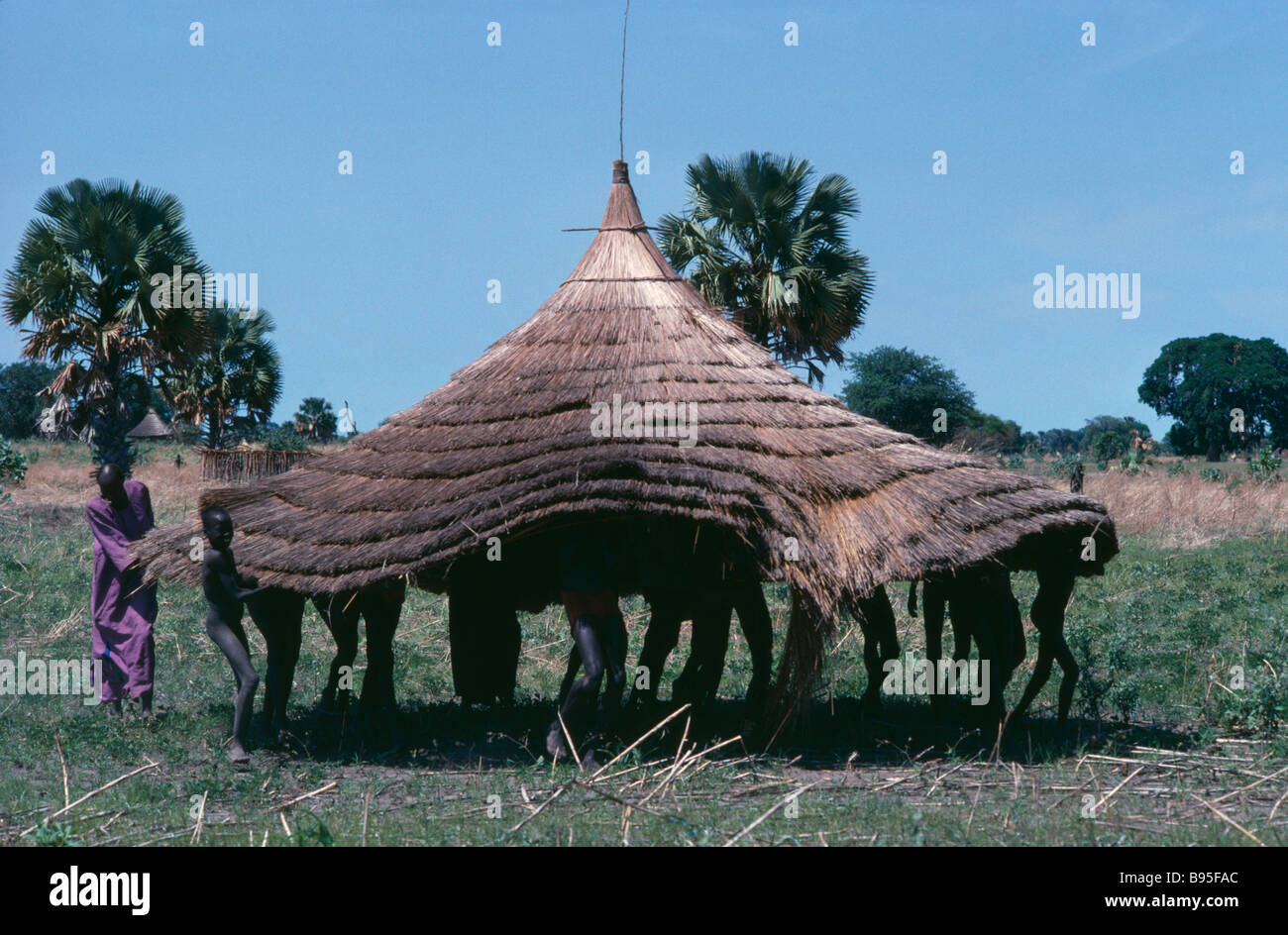 SUDAN Horn Of Africa Architecture Dinka tribe people moving circular thatched roof of hut. - Stock Image
