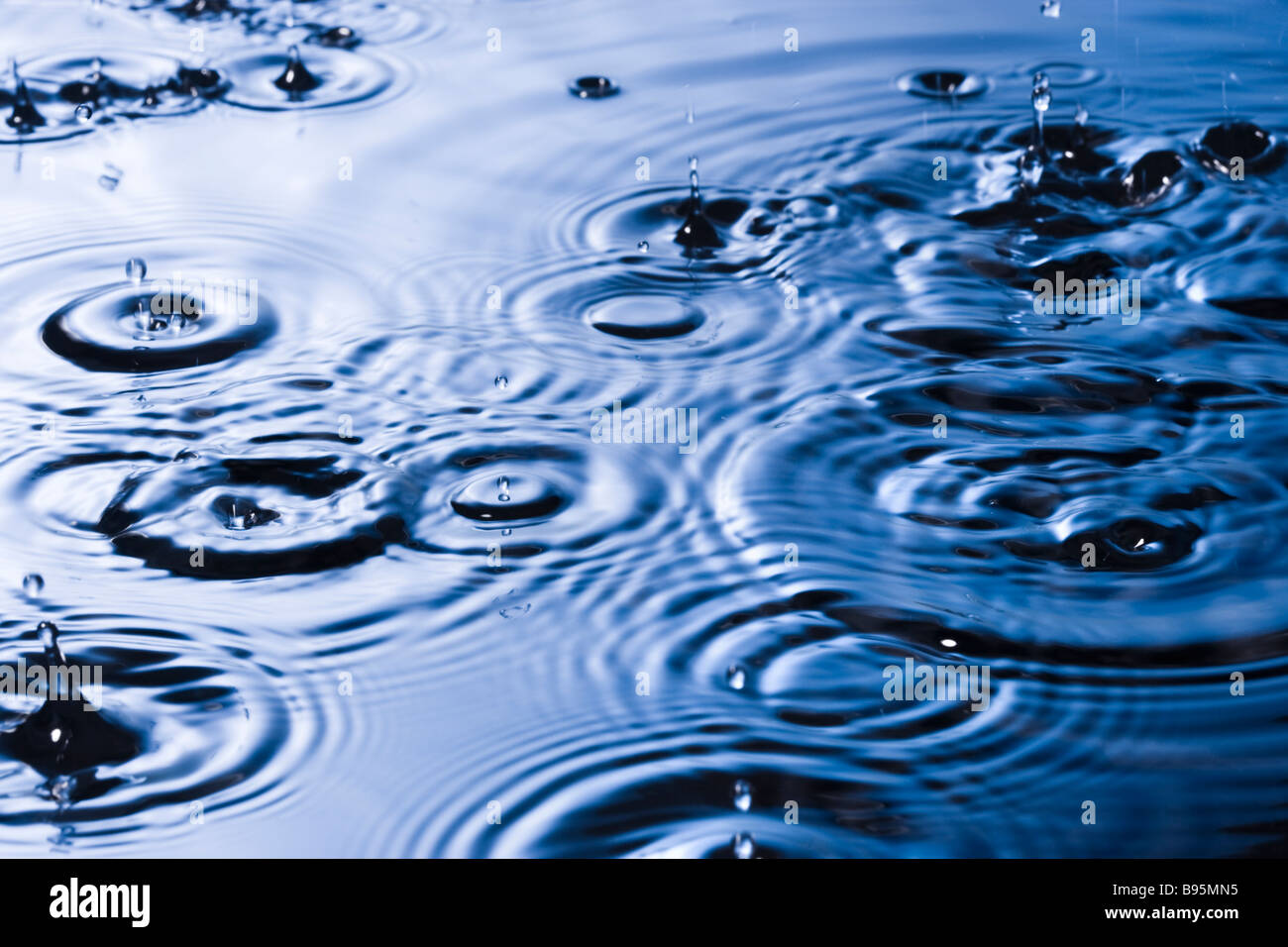 Rain drops and ripples - Stock Image