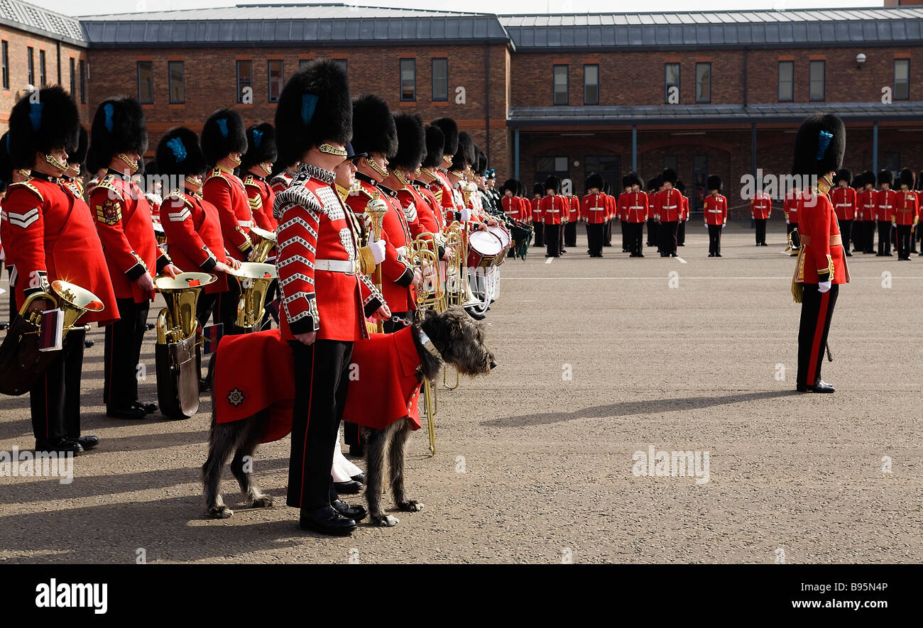The 1st Battalion the Irish Guards on parade at Victoria Barracks Windsor UK on St Patrick's Day - Stock Image