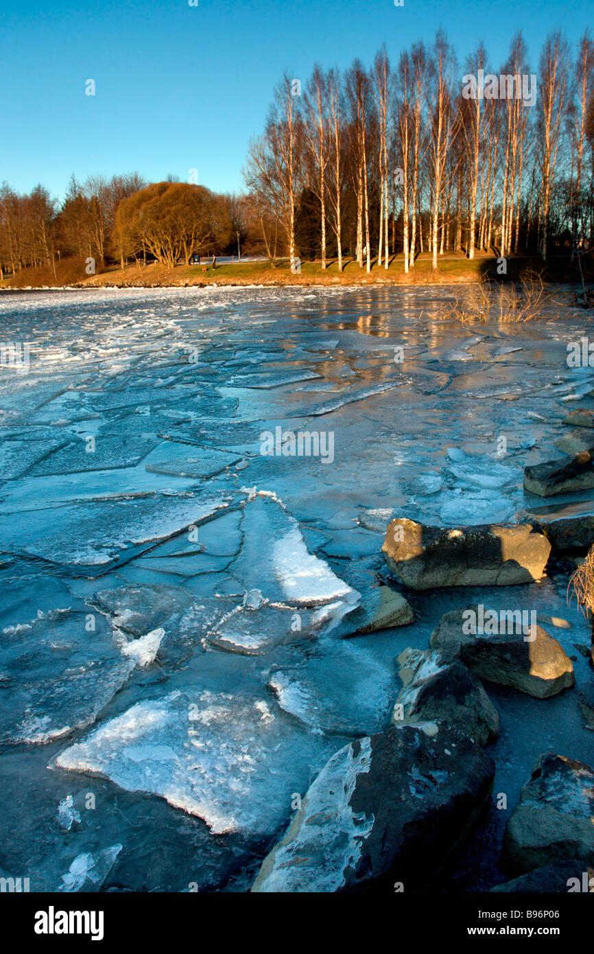 Tampere: Hatanpää Mansion & Arboretum: Lake Pyhäjärvi Hummock Ice and Trees - Stock Image