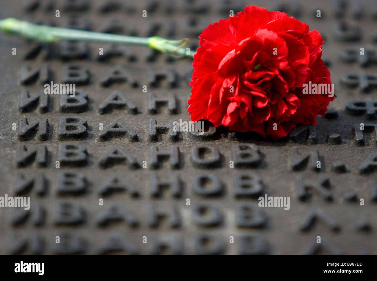 Flowers on a memorial to soldiers killed in the 1941 1945 Great Patriotic War against Nazi Germany - Stock Image