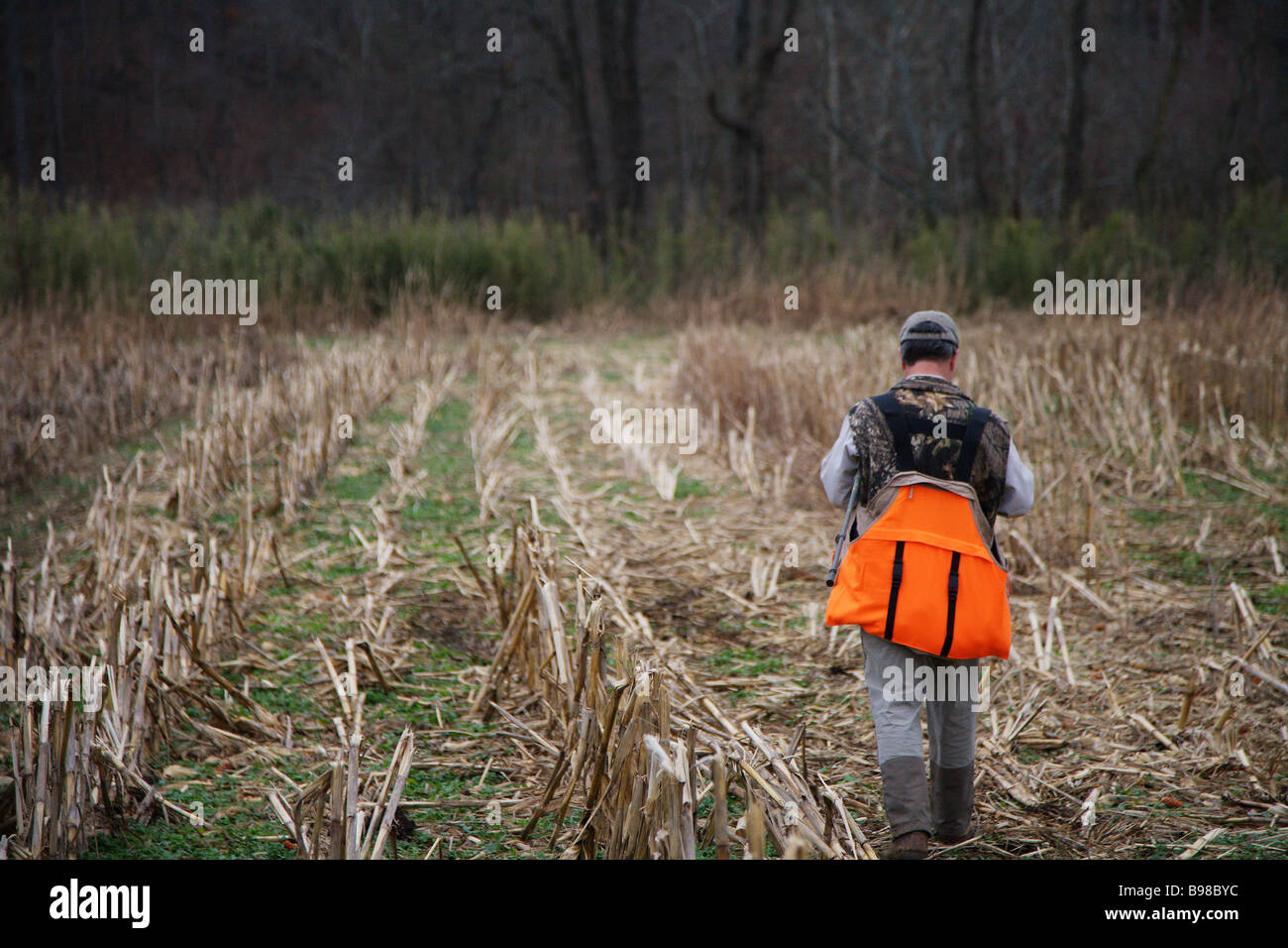 c3ae265a84efd HUNTING GUIDE WALKING AN OPEN FIELD CABELLAS ORANGE CARRY VEST BROWNING HAT  LL BEAN PANT