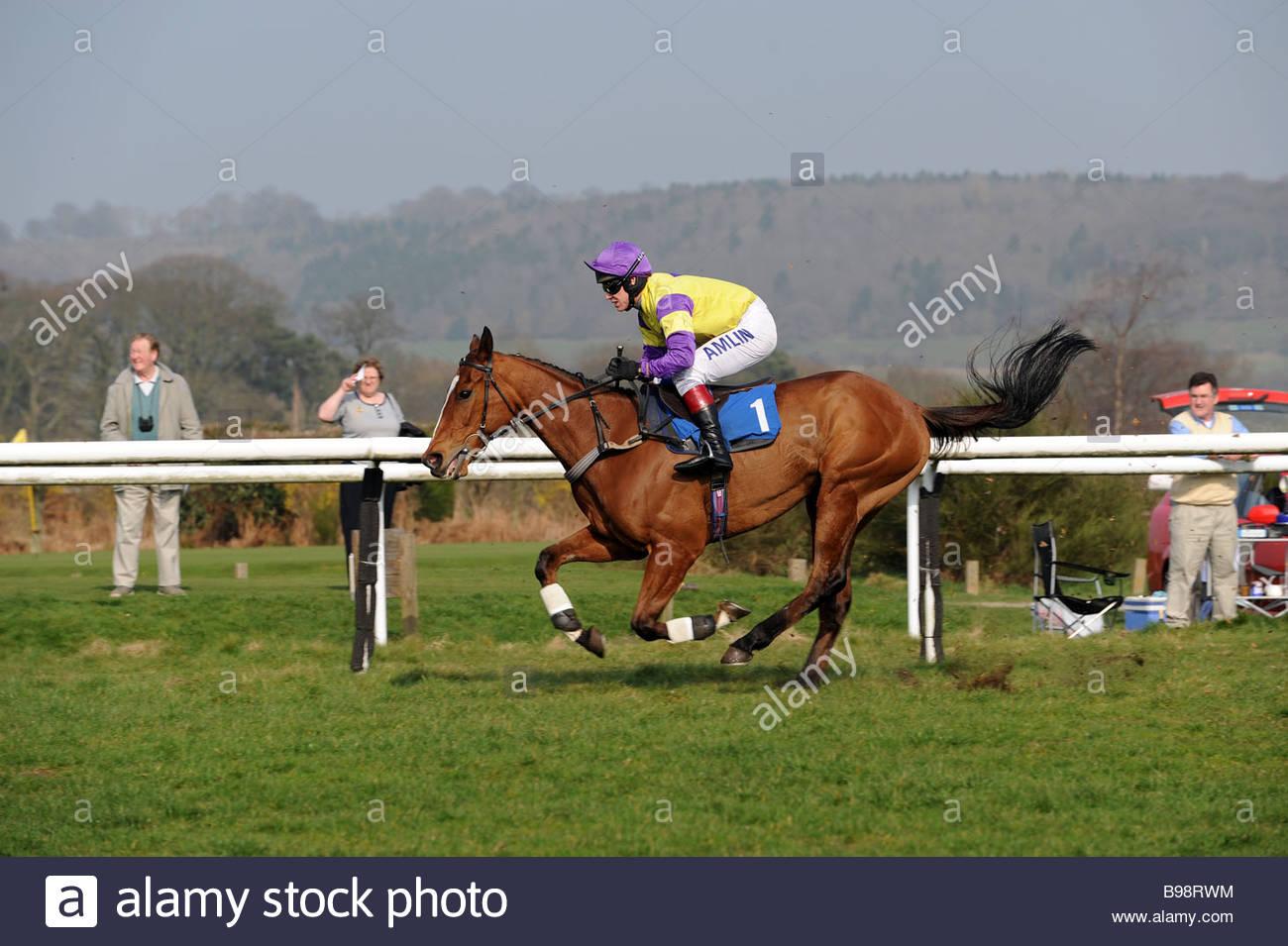 A horse and jockey at Ludlow Racecourse Shropshire Stock Photo