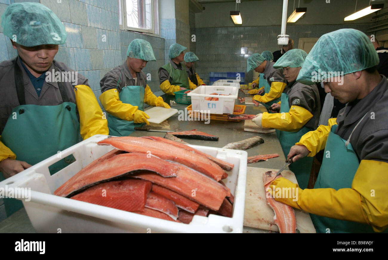 Fish processing stock photos fish processing stock for Pacific fish company
