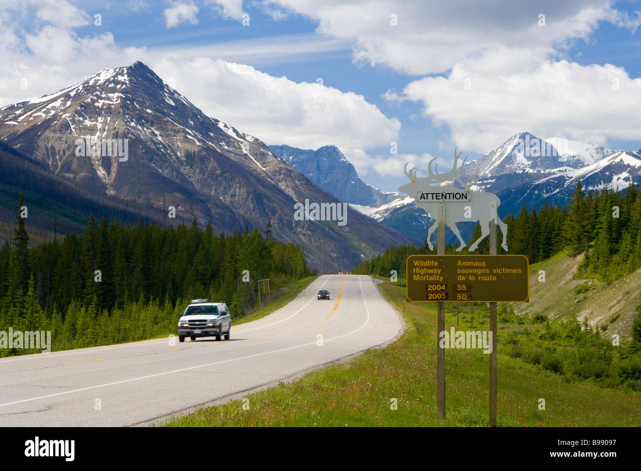 Road & beware of animals crossing sign Yoho National Park, British Colombia, Canada - Stock Image