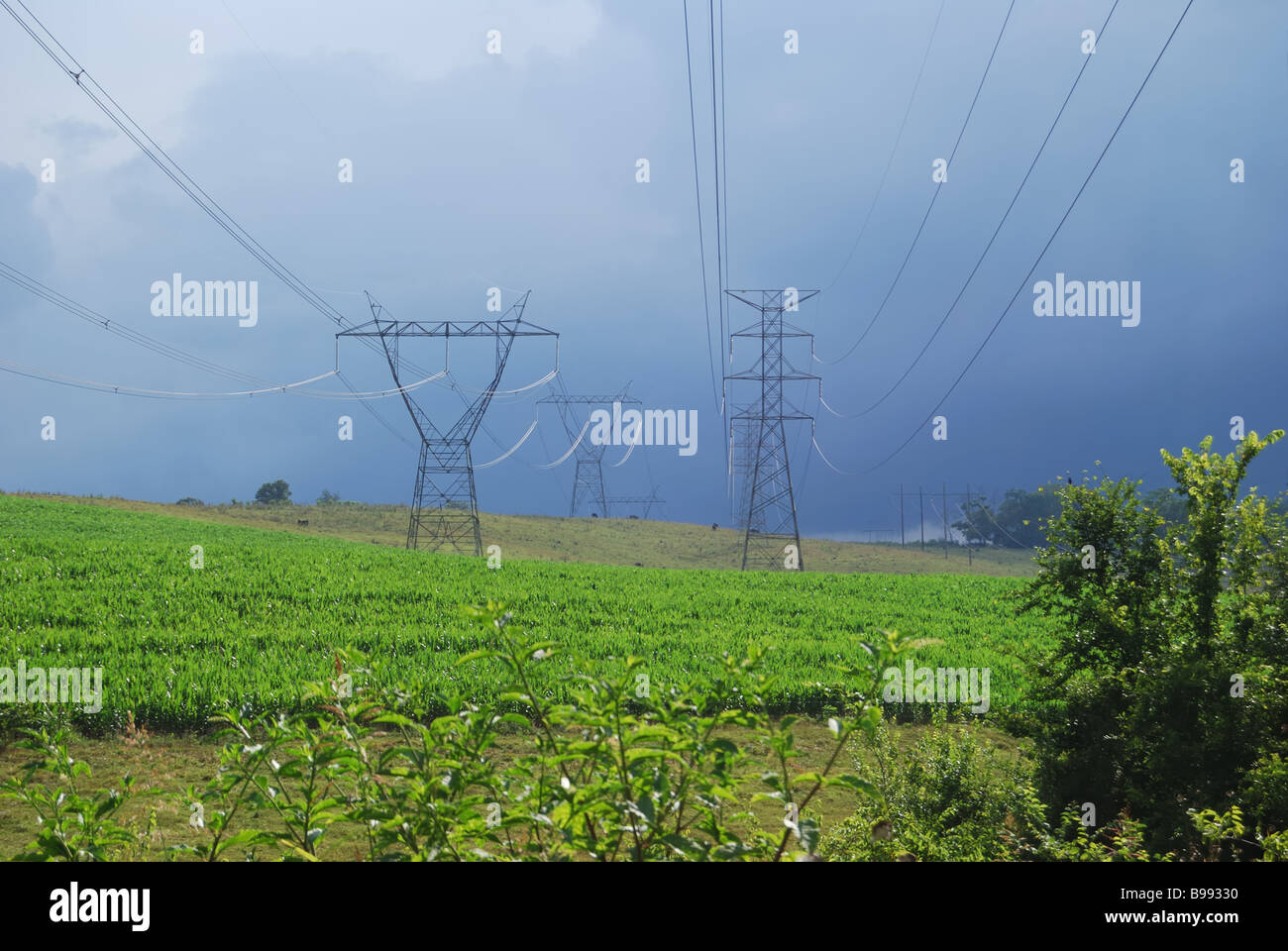 Electrical transmission towers isolated against a beautiful blue sky.  Photo by Darrell Young. - Stock Image