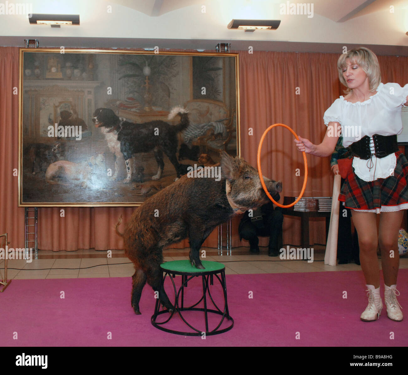 Year of the Dog passes on baton to Year of the Pig at the State History Museum - Stock Image