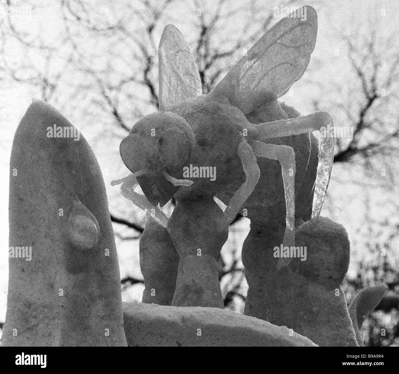 Snow flower with a bee made by Scandinavians at the International Ice Carving Festival Vyugovei 91 Stock Photo
