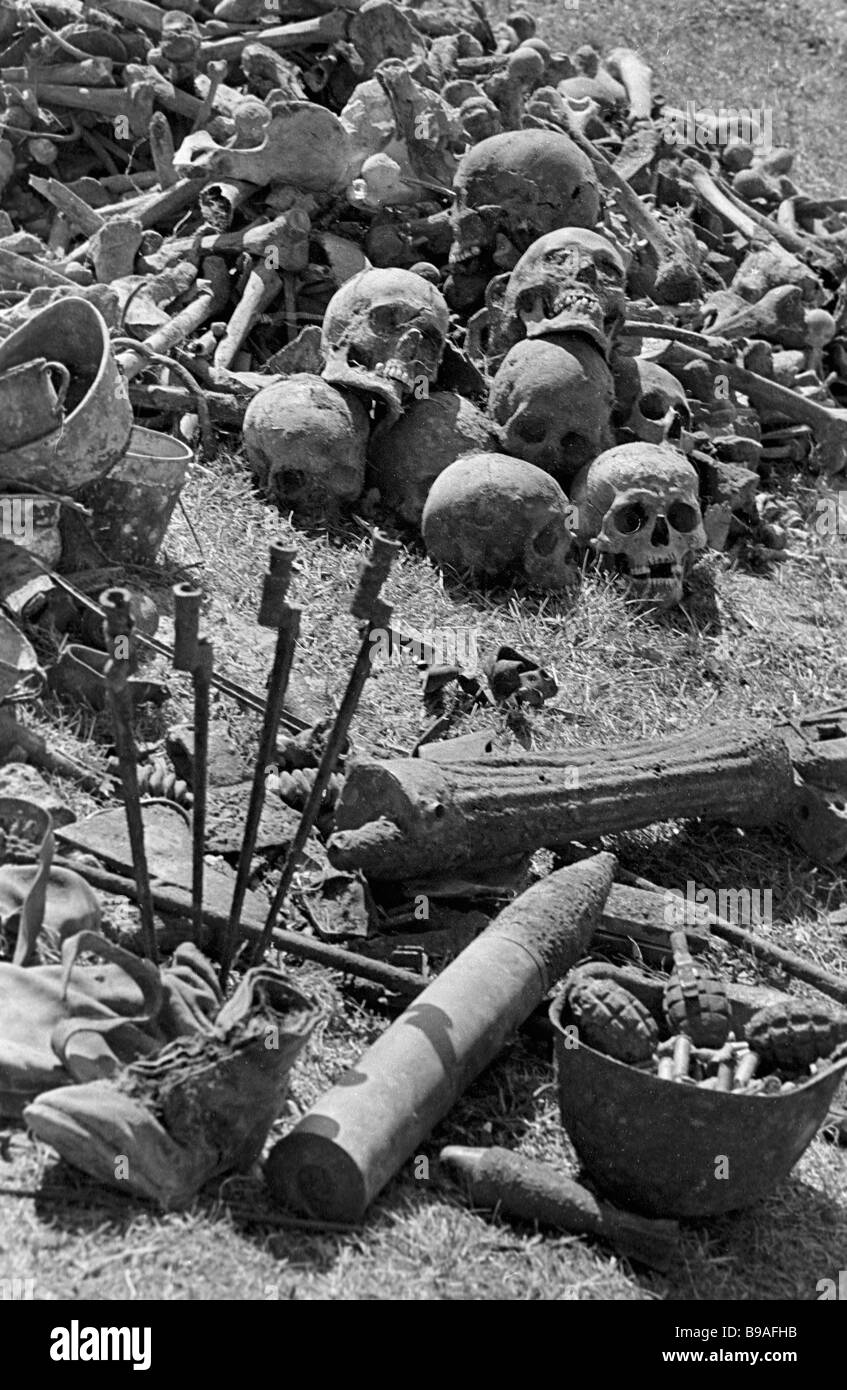 The remains of fallen soldiers arms and ammunition found by Vozrozhdeniye Group searchers where World War II was - Stock Image