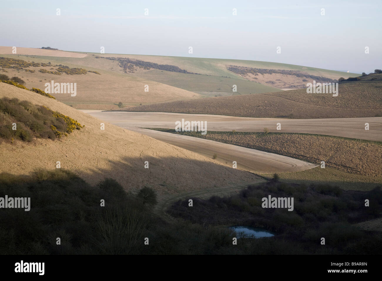 Castle Hill National Nature Reserve. South Downs. Natural downland. - Stock Image