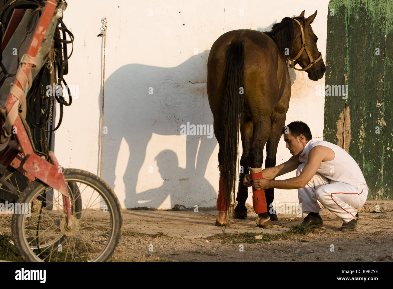man bike and horse at stables - Stock Image