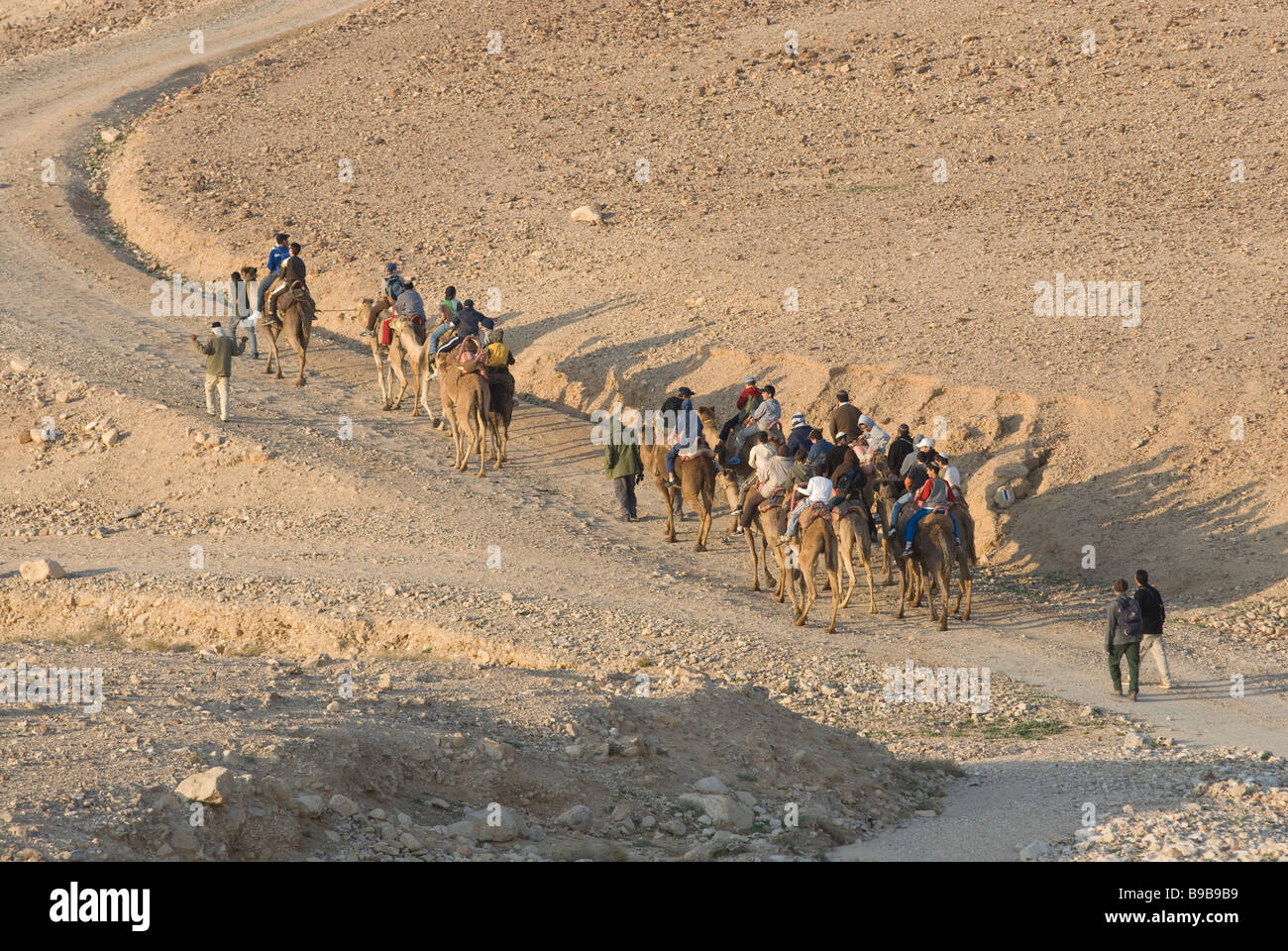 Group of Israeli schoolchildren riding camels in the Negev desert. Southern Israel Stock Photo