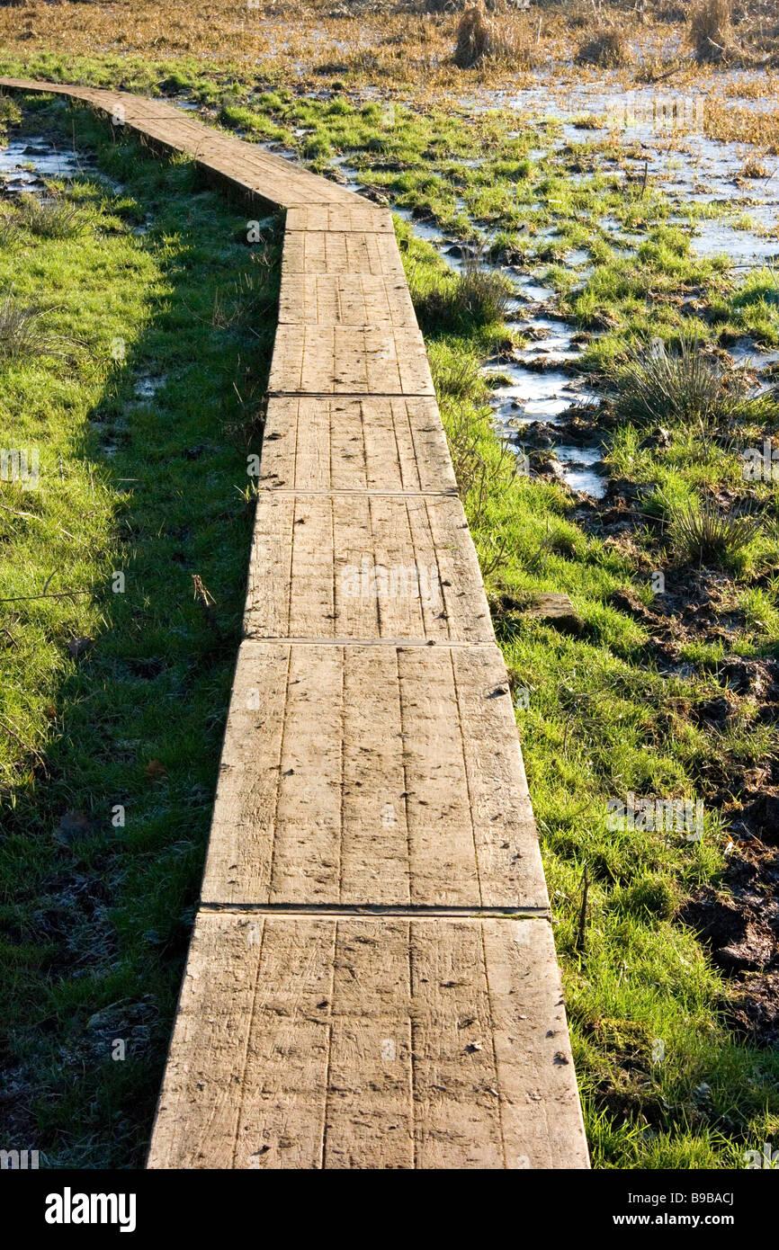 Wooden Walkway Over Marshy Ground Near Shalford Surrey Stock Photo
