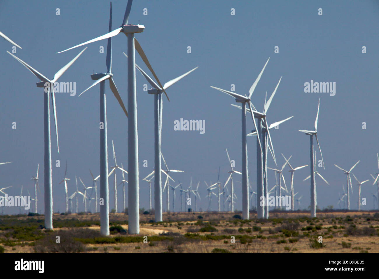 Wind turbines generating electricity at Horse Hollow Wind Farm Nolan Texas the world's largest wind power project - Stock Image
