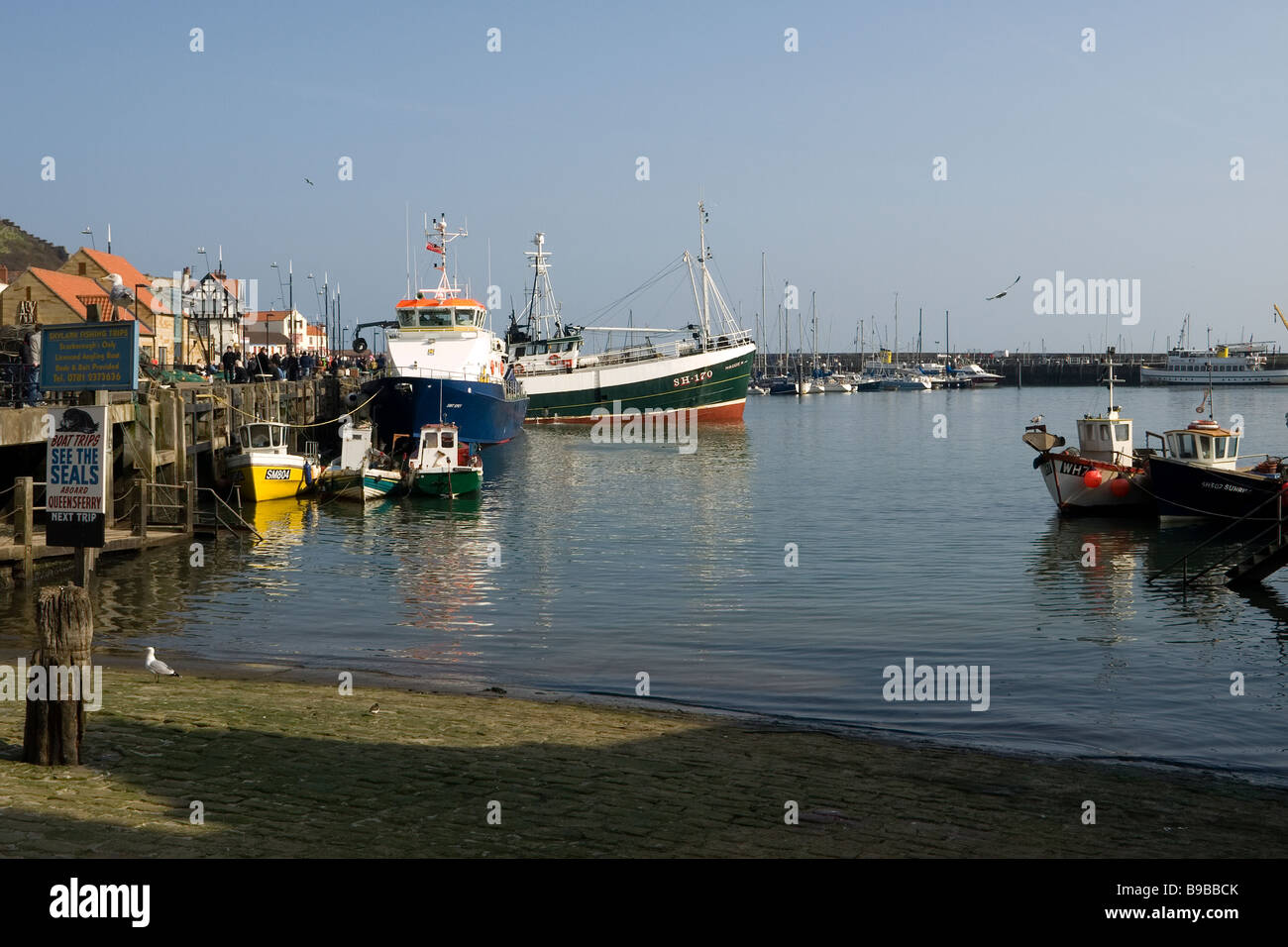 Fishing boats in the harbour at Scarborough North Yorkshire - Stock Image