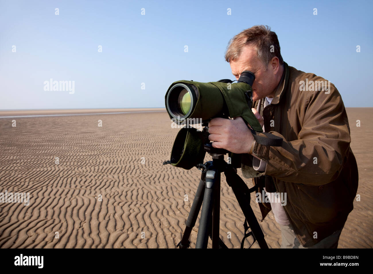 estuary bird monitoring - Stock Image
