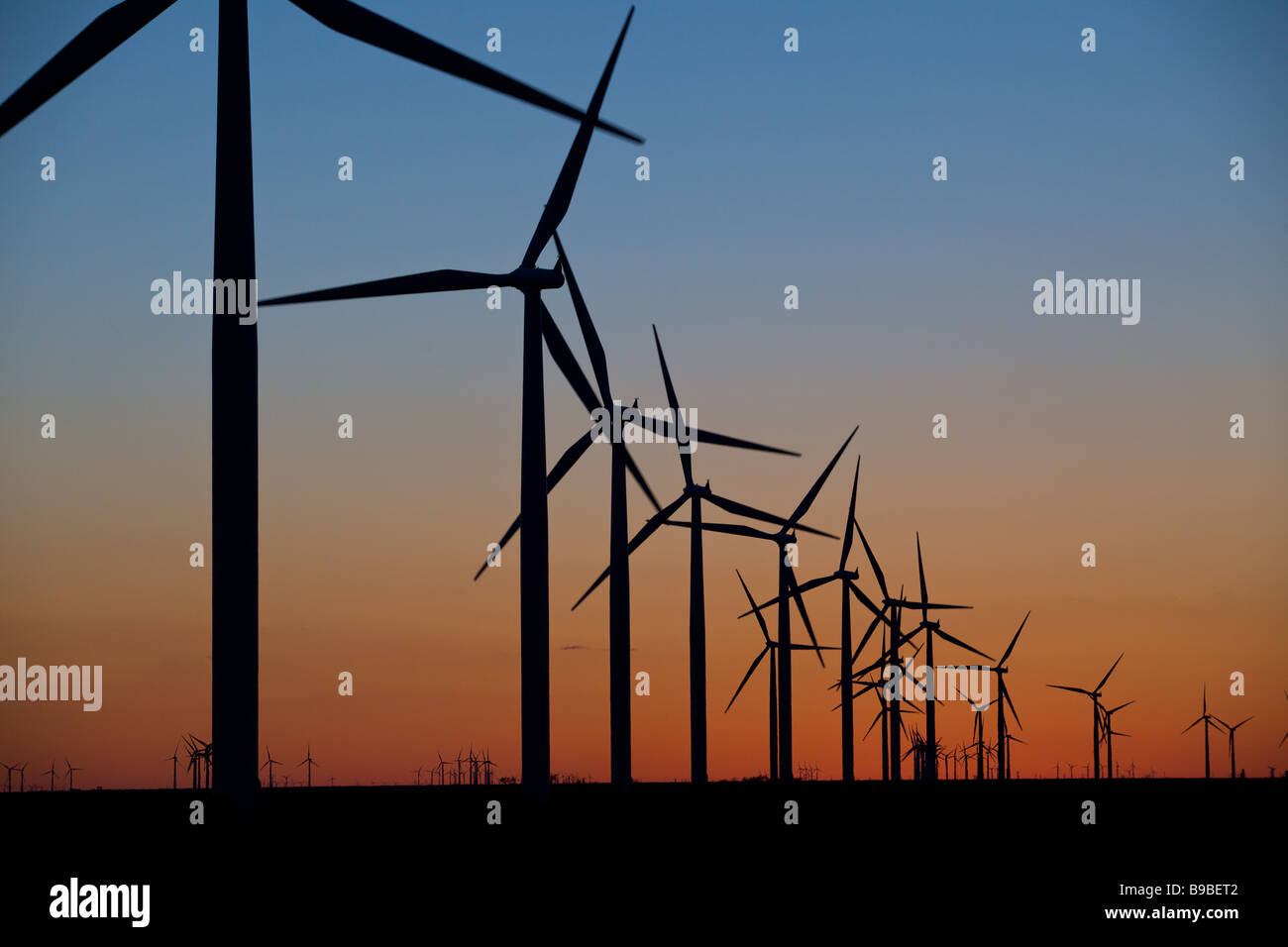 Twilight over wind turbines generating electricity at Horse Hollow Wind Farm Nolan Texas - Stock Image