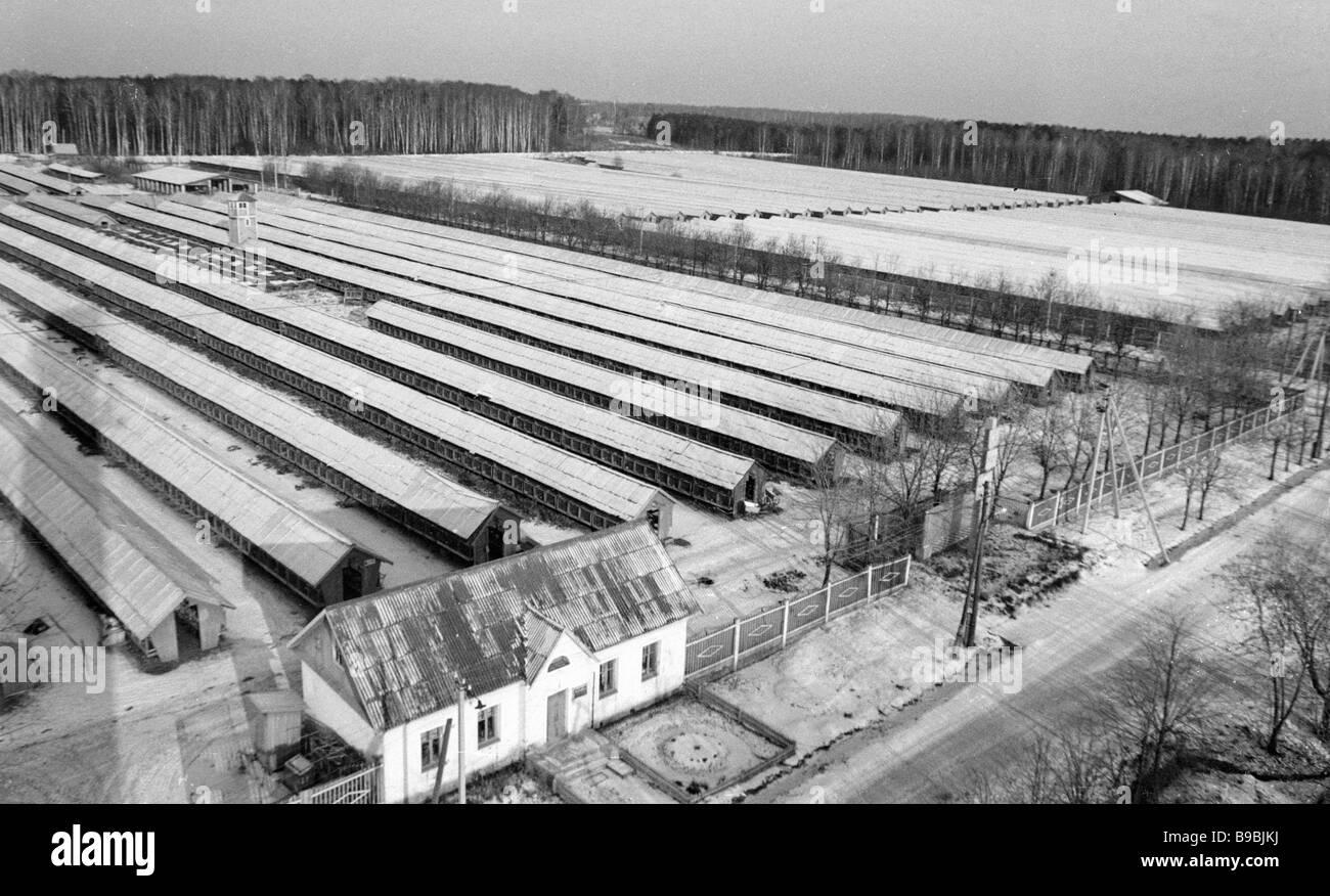 Facilities of the Pushkinsky fur animal breeding state farm - Stock Image