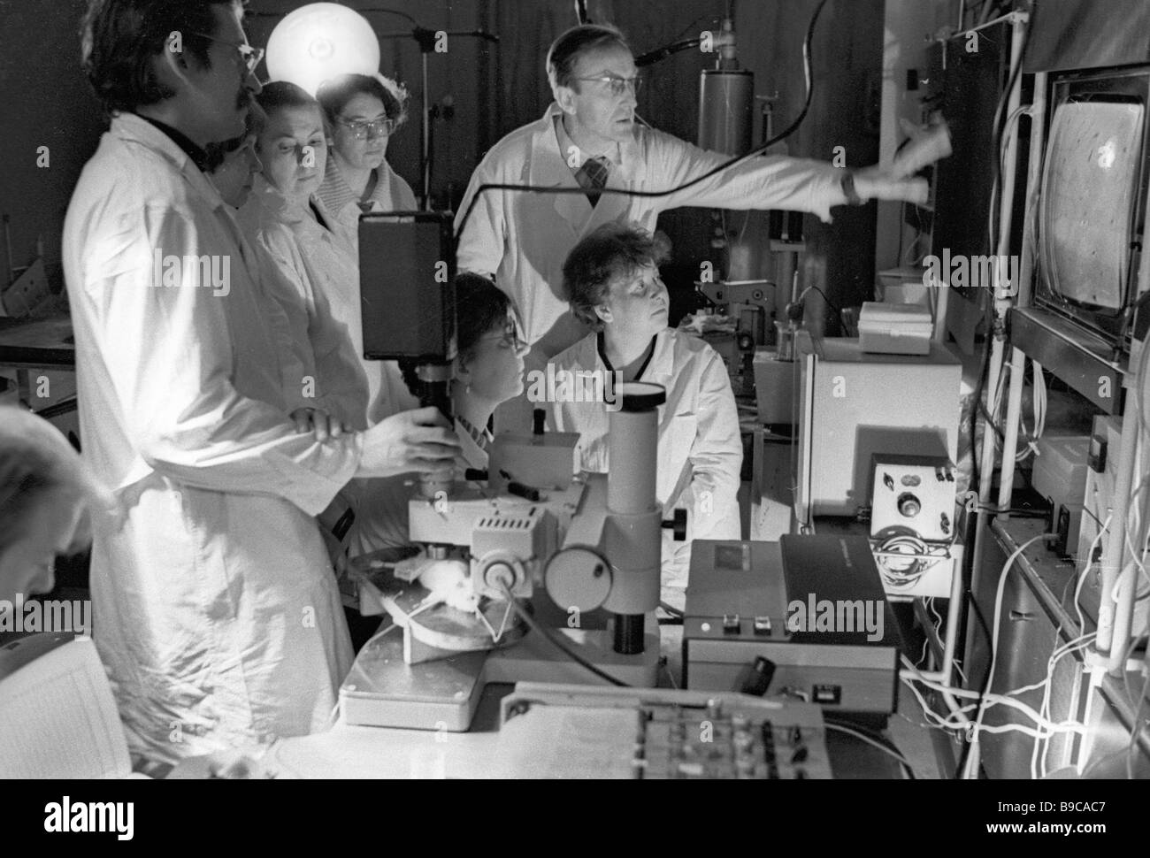 Staff researchers of the Hematology and Blood Transfusion Institute check experiment results - Stock Image