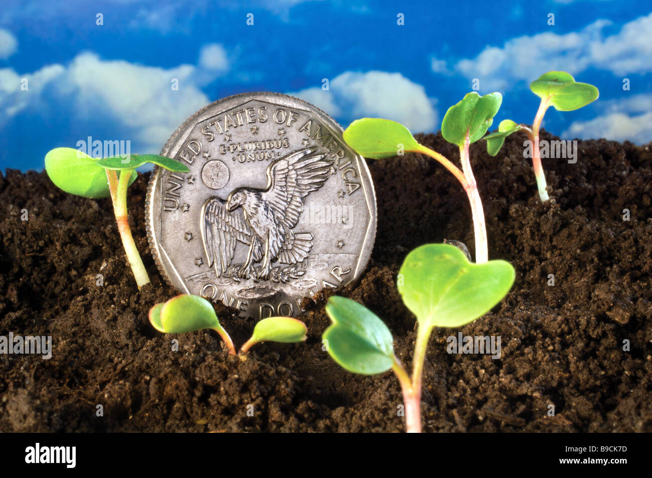 green shoots recovery US Dollar economy economic growth - Stock Image