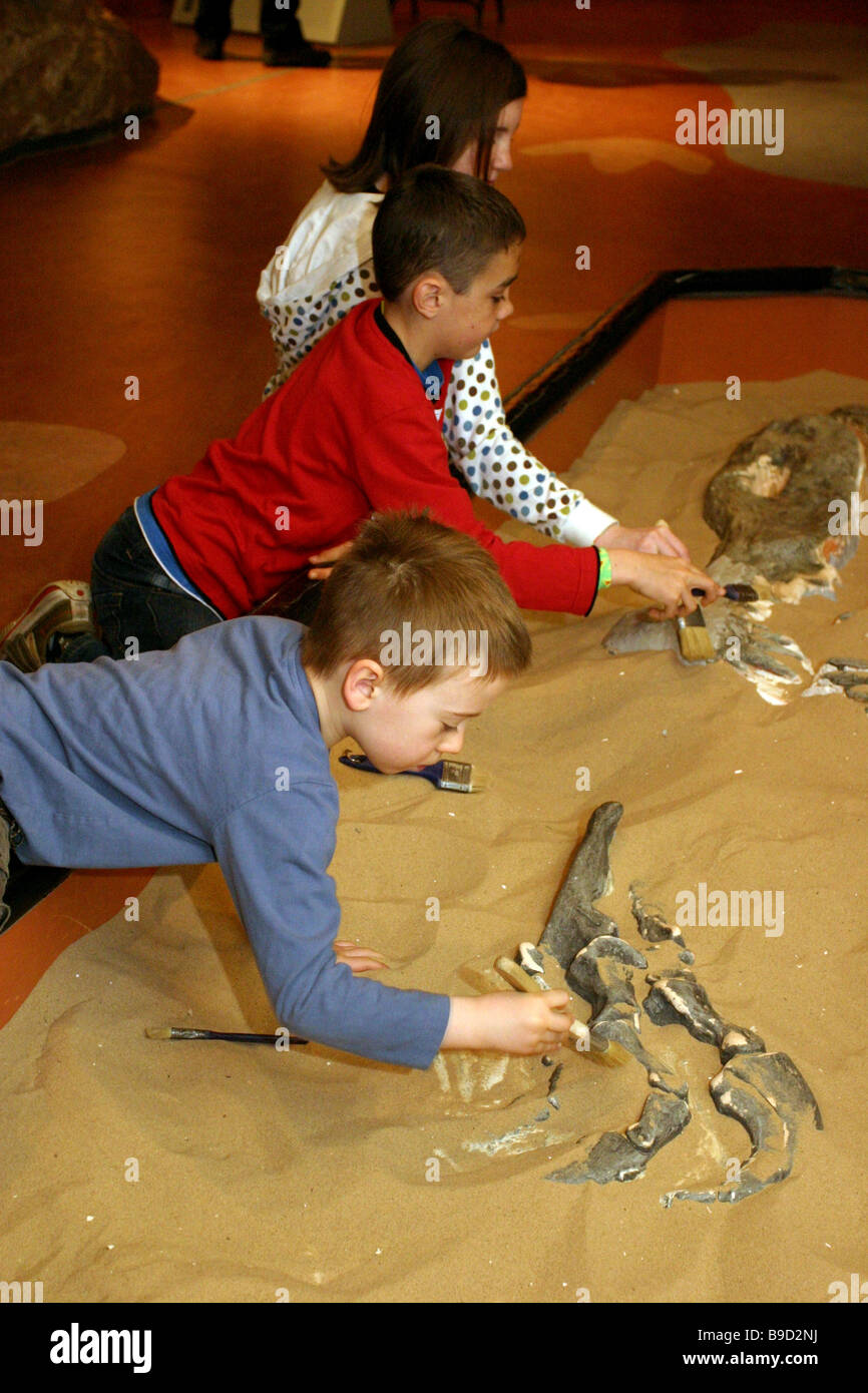 Young children learning about archaeology by un covering dinosaur  bones at a museum of science. - Stock Image