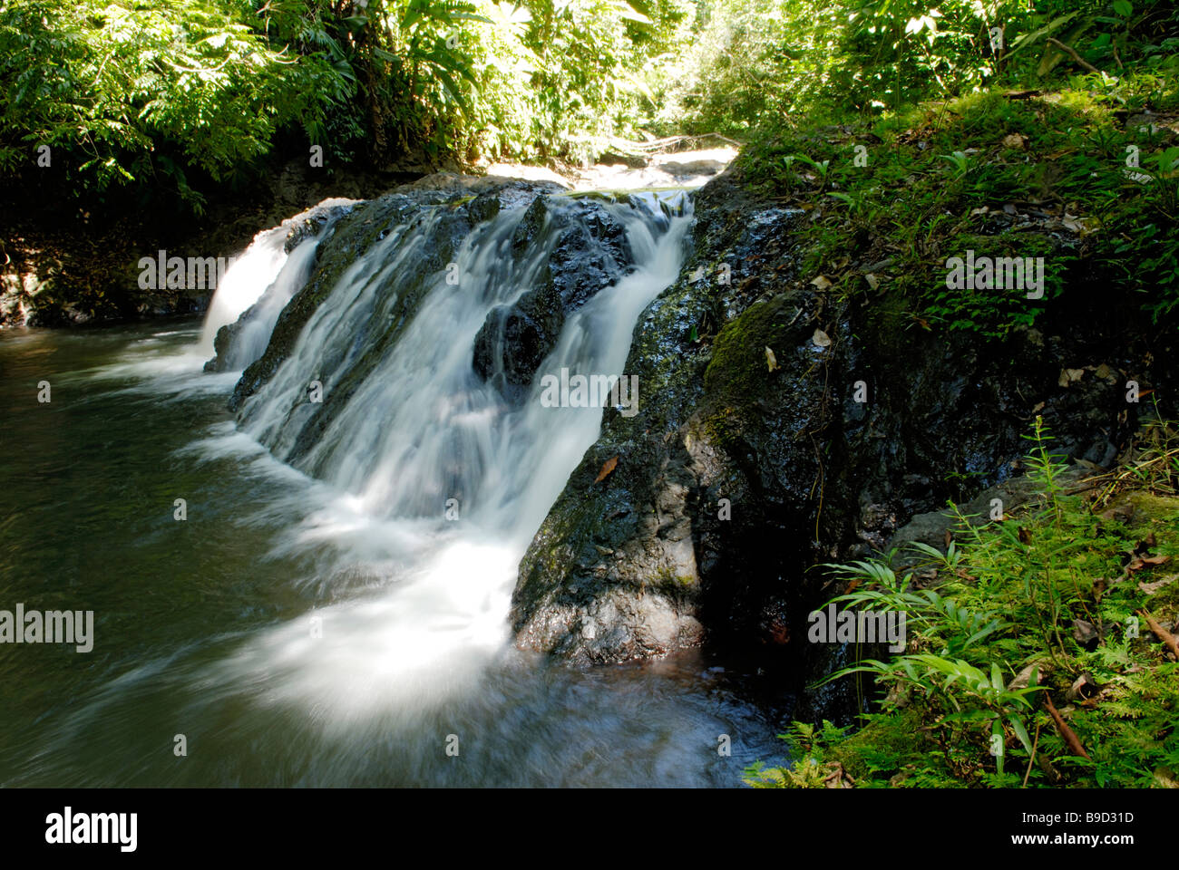 Waterfall, Corcovado National Park - Stock Image