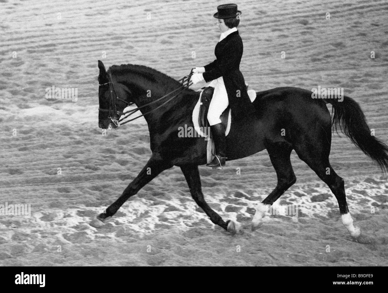 Equestrian Olympics Black And White Stock Photos Amp Images