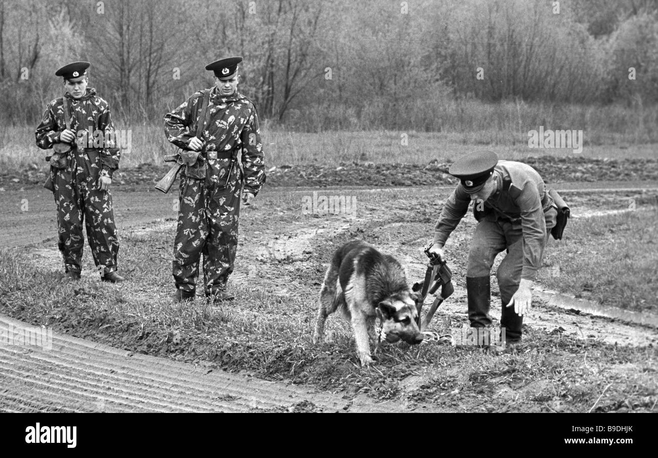 Border guard dog following traces of trespasser during the exercise - Stock Image