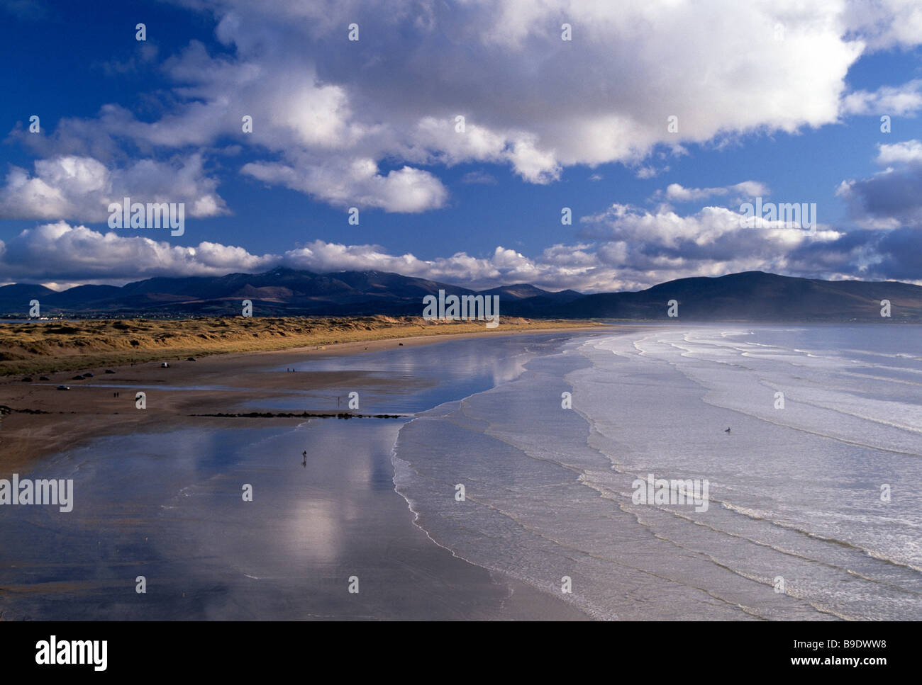 ireland, county kerry, dingle peninsula, inch beach, atlantic west coast. beauty in nature, wild atlantic way, - Stock Image