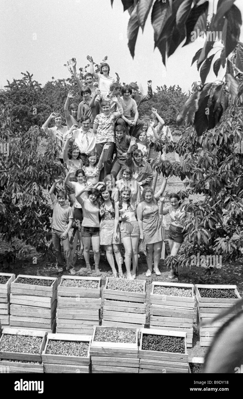 Schoolchildren pose for a photograph with crates of fruit they have picked working in a Crimean orchard on summer - Stock Image