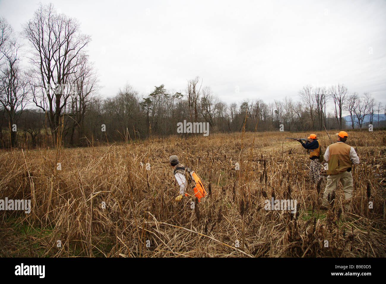 YOUTH HUNTER FIRING AT GAME FATHER AND HUNTING GUIDE LOOK ON